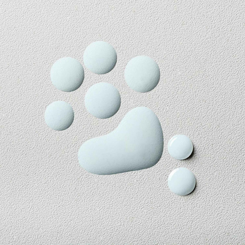 InstaNatural Hyaluronic Acid 85% Serum, Plump, Stem Cell Technology